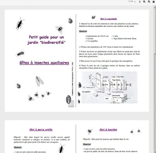 Livret-insectes-auxilliaires