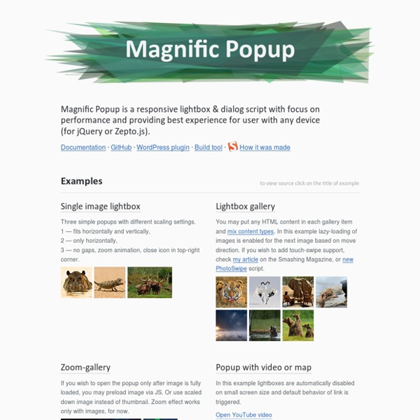 Magnific Popup: Responsive jQuery Lightbox Plugin | Pearltrees
