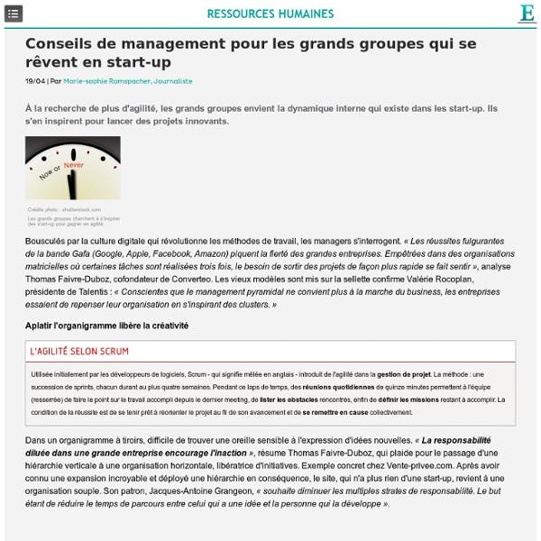 Management : conseils pour les grands groupes qui se rêvent en start-up
