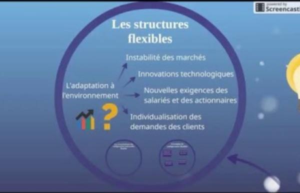 BTS Management - Th3 Chap2 : Faire évoluer la structure managériale : La flexibilité