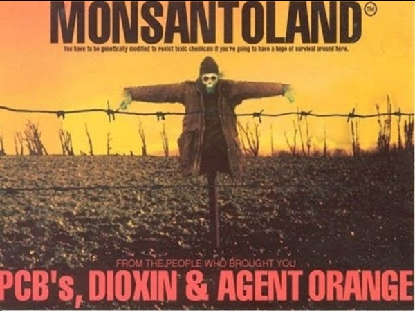 Marie-Monique Robin - Le monde selon Monsanto