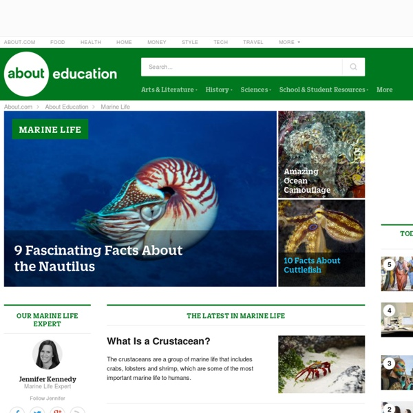 About Marine Life: Ocean Animals, Plants, and Habitats