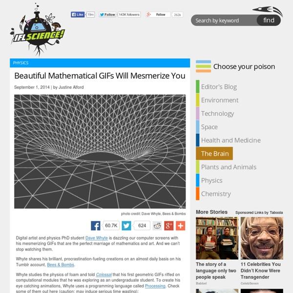 Beautiful Mathematical GIFs Will Mesmerize You