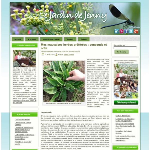 Mes mauvaises herbes préférées : consoude et ortie