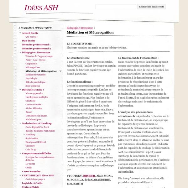 Médiation et Métacognition