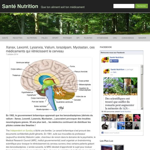 Xanax, Lexomil, Lysanxia, Valium, lorazépam, Myolastan, ces médicaments qui rétrécissent le cerveau