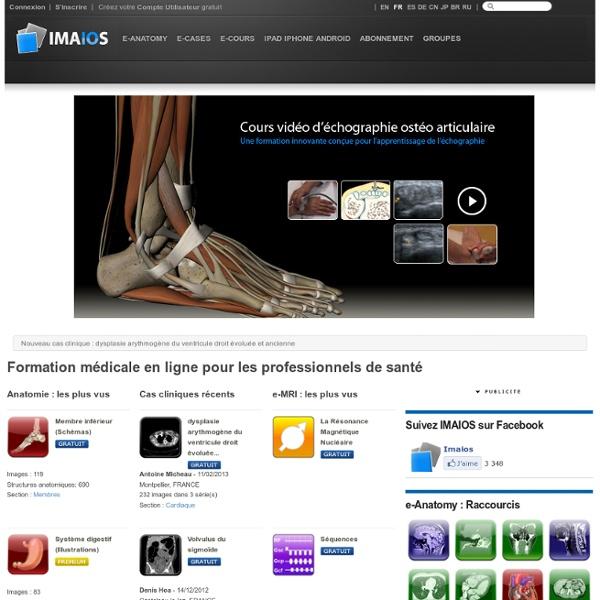 Anatomie humaine - IMAIOS