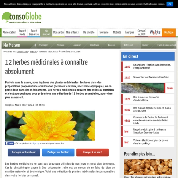 12 herbes médicinales à connaître absolument
