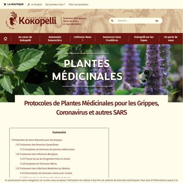Protocoles de Plantes Médicinales pour les Grippes, Coronavirus et autres SARS - Le blog de Kokopelli