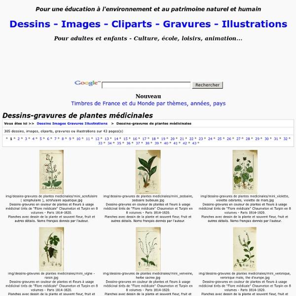 Dessins-gravures de plantes médicinales - Dessins Images Gravures Illustrations