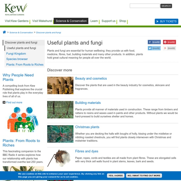 PLANT CULTURES - Home Page