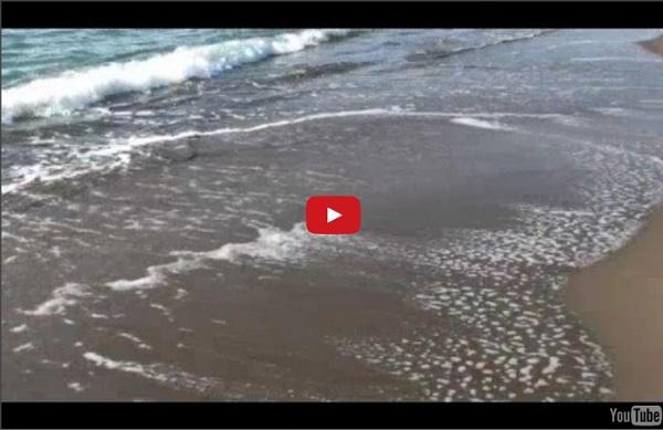 Méditation près de la mer