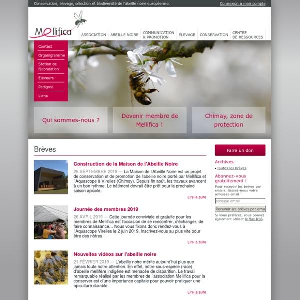 Mellifica - Conservation, élevage et sélection de l'abeille noire