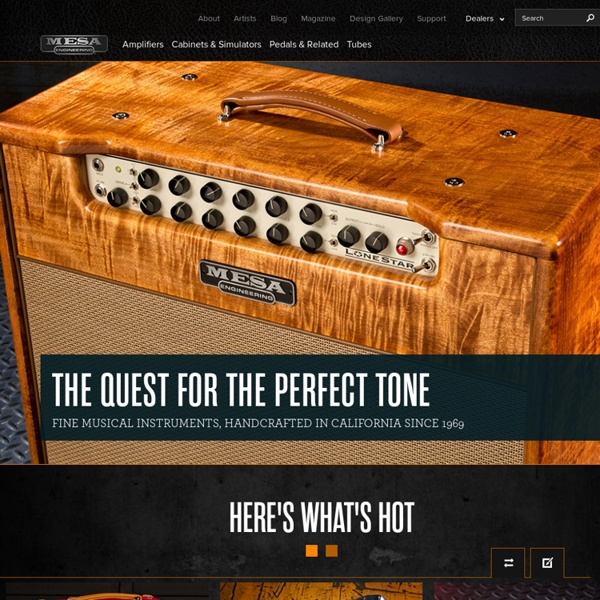 Mesa Boogie Vacuum Tube Guitar and Bass Amplifier