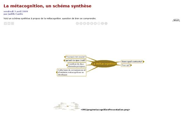[MétaTIC]La métacognition, un schéma synthèse