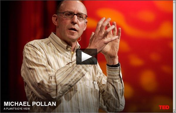 Micheal Pollan partage le point de vue d'une plante