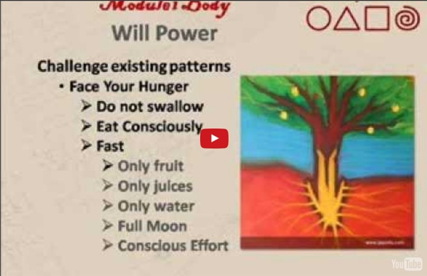 Mindful Eating and Willpower Exercises