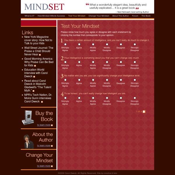 Test Your Mindset