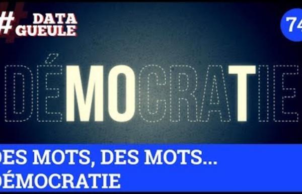 Des mots, des mots... Démocratie ? - #DATAGUEULE 74