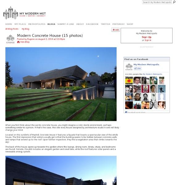 Modern Concrete House (15 photos)
