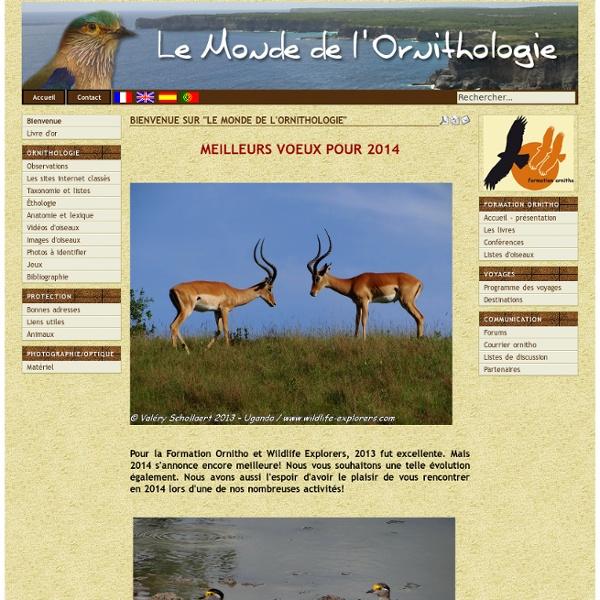 Le monde de l'ornithologie - Bienvenue