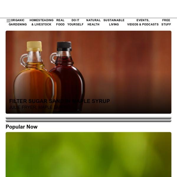 Organic Gardening, Modern Homesteading, Renewable Energy, Green