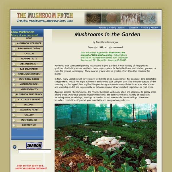 Mushroom Garden Patches