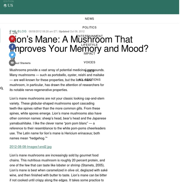 Paul Stamets: Lion's Mane: A Mushroom That Improves Your Memory and Mood?