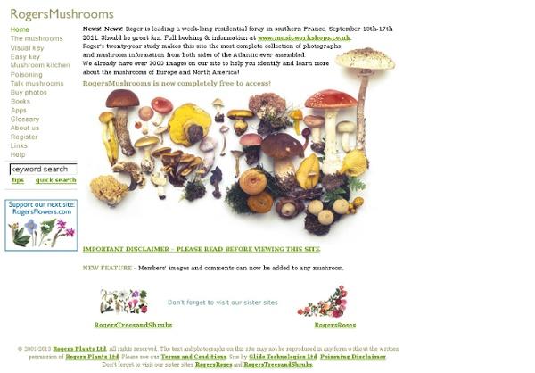 Mushroom Pictures & Mushroom Reference