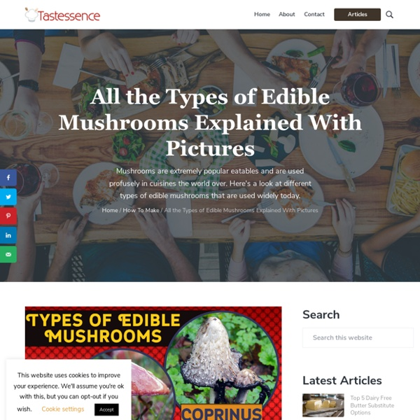 All the Types of Edible Mushrooms Explained With Pictures