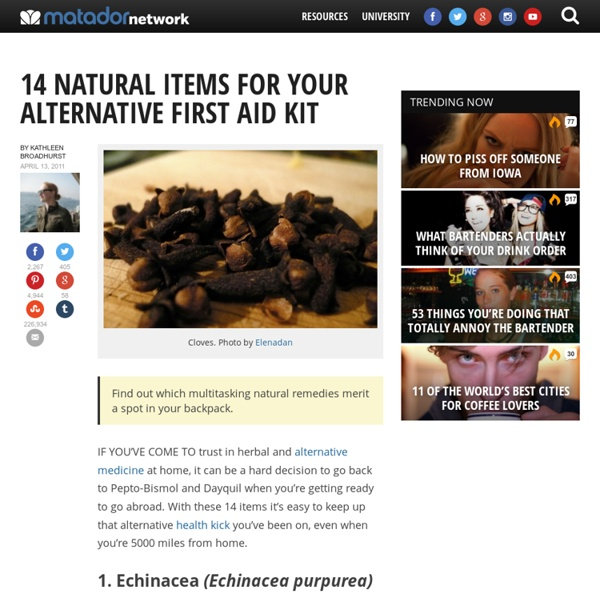 14 natural items for your alternative first aid kit