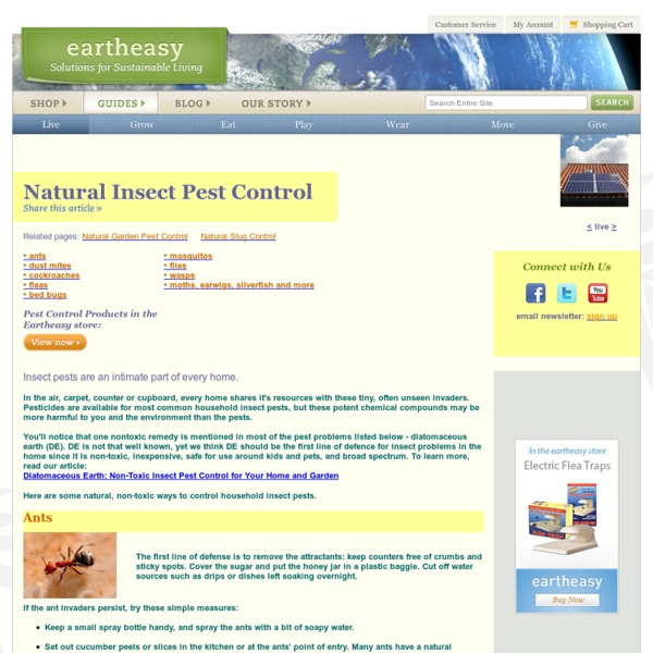 Natural Insect Pest Control: Safe, Non-Toxic Methods & Solutions