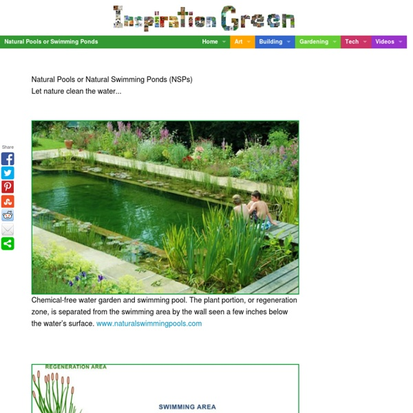 Natural Pools or Swimming Ponds