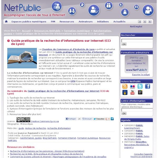 Guide pratique de la recherche d'informations sur Internet (CCI de Lyon)