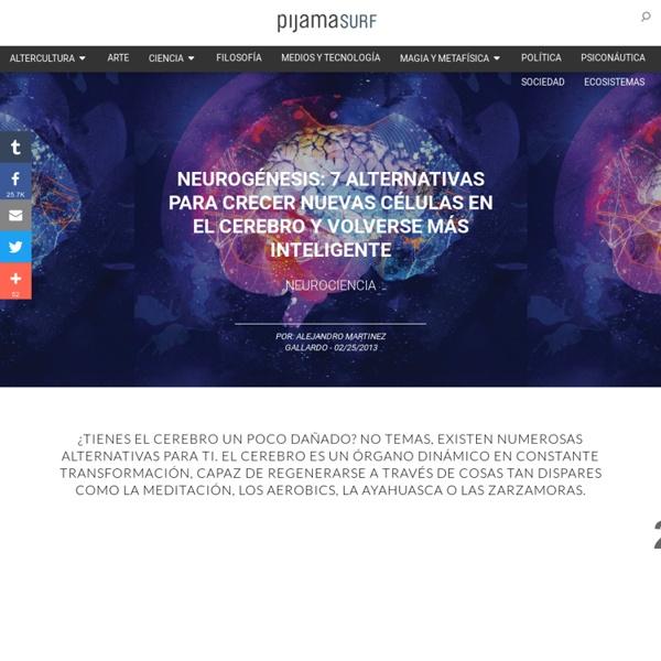 Neurogénesis: 7 alternativas para crecer nuevas células en el cerebro y volverse más inteligente « Pijamasurf - Noticias e Información alternativa