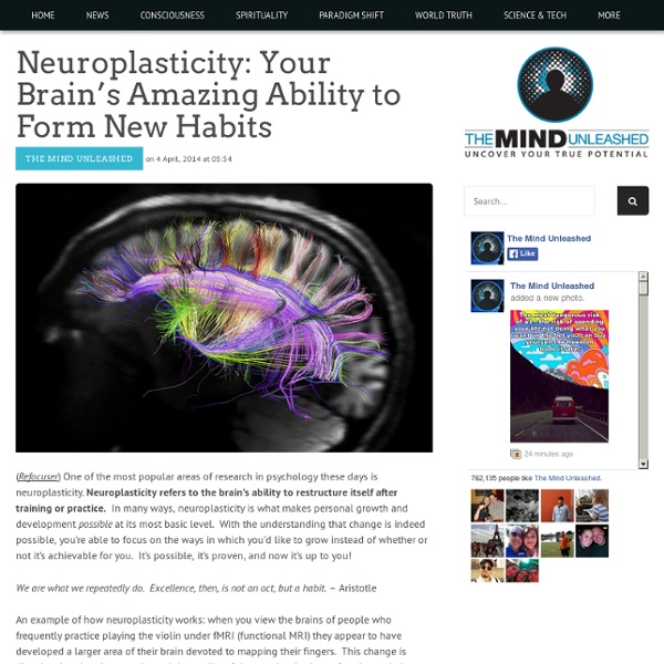 Neuroplasticity: Your Brain's Amazing Ability to Form New Habits