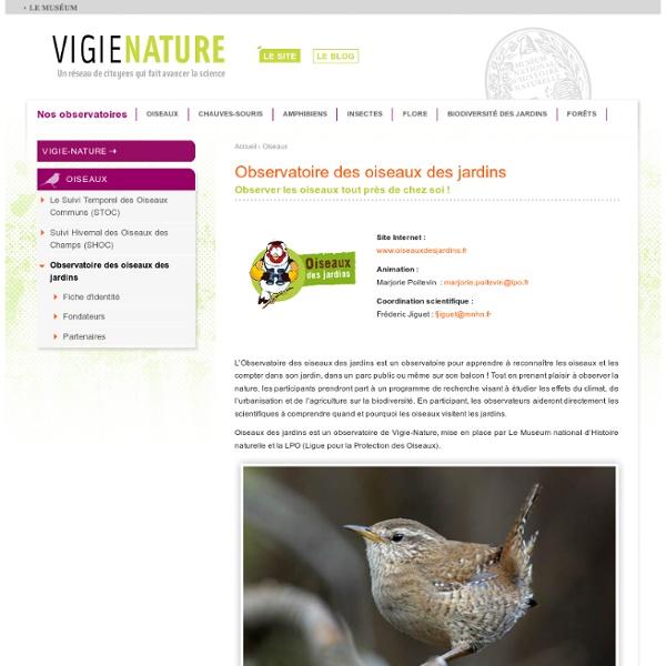 Observatoire des oiseaux des jardins
