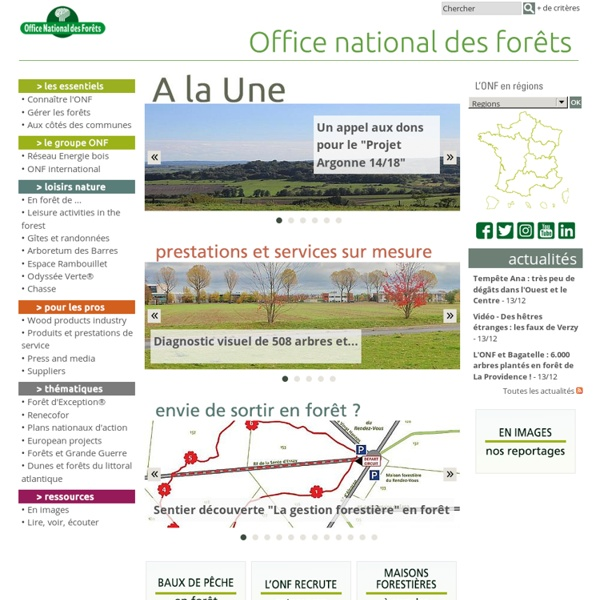 ONF - National Forestry Office - Top
