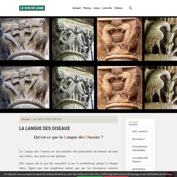 LA LANGUE DES OISEAUX - LE SON DE L'AME