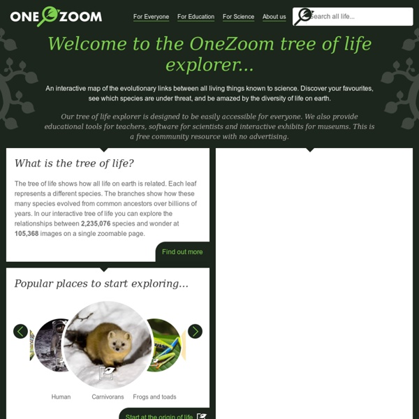 OneZoom Tree of Life Explorer