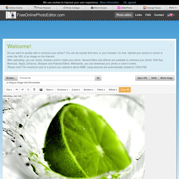 Editor de fotos y efectos fotográficos en línea, editar imágenes