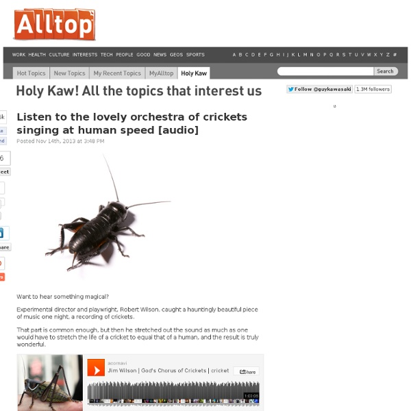 Listen to the lovely orchestra of crickets singing at human speed [audio] [updated