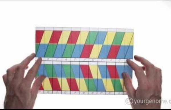 ADN en origami