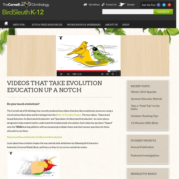 Videos that Take Evolution Education Up a Notch : Cornell Lab of Ornithology: BirdSleuth K-12