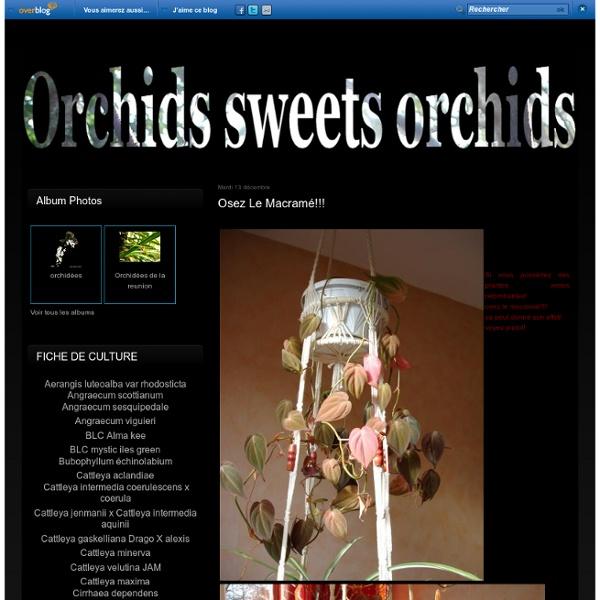 Osez le macramé!!! - Orchids sweet Orchids