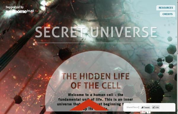 Our Secret Universe