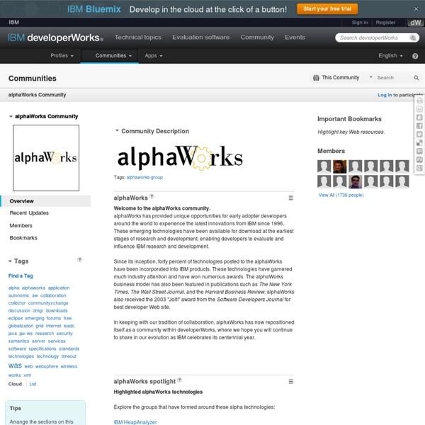AlphaWorks : IBM Web Ontology Manager : Overview