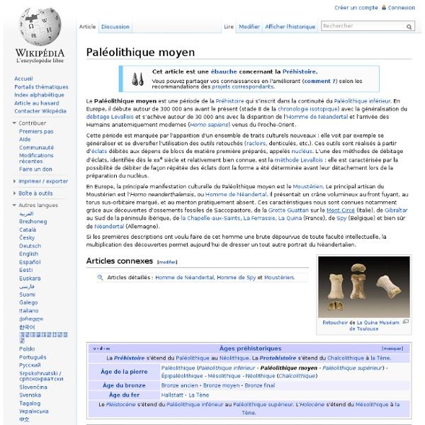 Paléolithique moyen