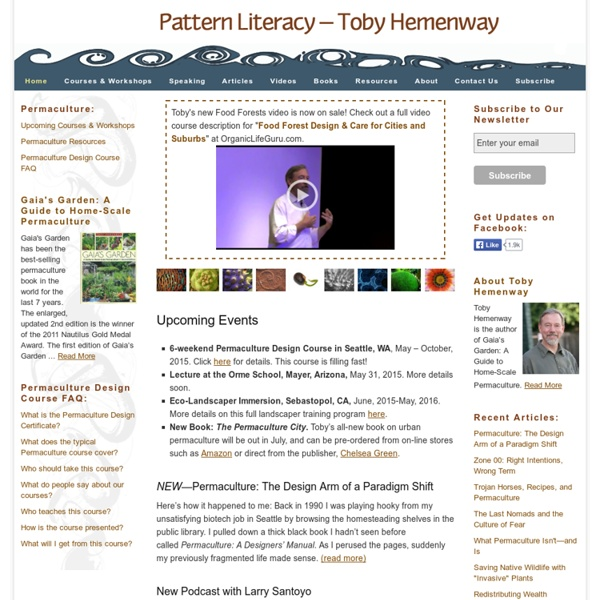 The Center for Pattern Literacy – Toby Hemenway