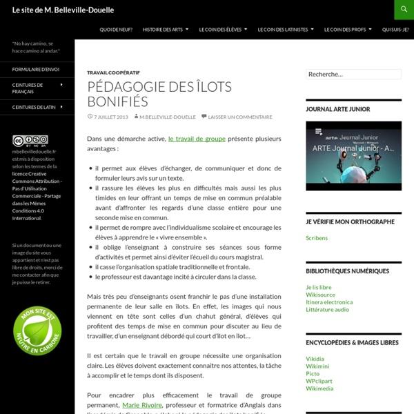 Le site de M. Belleville-Douelle